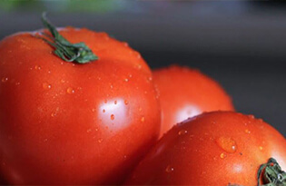 Food Tips Tomatoes